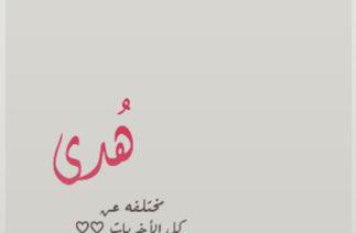 Maher Zain – Neredesin (Turkish – Türkçe)ماهر زين 00 01 13 – 00 04 43