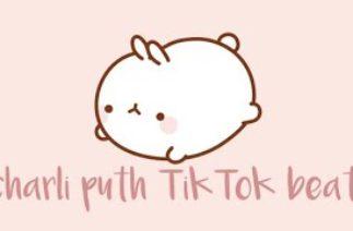 Charli Puth TikTok beat || looped || 👁👄👁