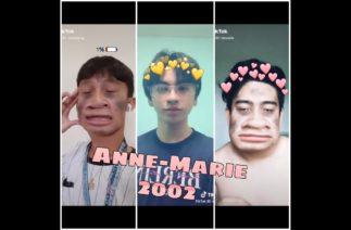 Anne-Marie – 2002 Remix (TikTok Compilation)