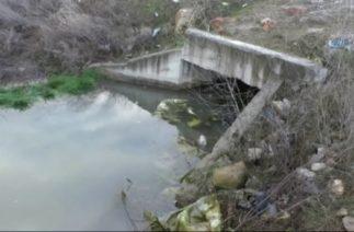 Denizli'de Trafik Kazası; 5 Genç Boğularak Can Verdi