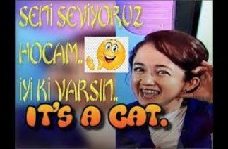 EBA TV KOMİK BULUNAN İNGİLİZCE ÖĞRETMENİ IT'S A CAT