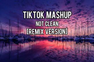 TIKTOK MASHUP *NOT CLEAN* [Remix Version]