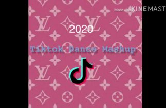 TikTok Dance Mashup 2020 (not clean)