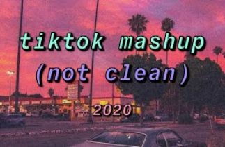 tiktok mashup 2020 (not clean) #2