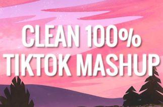 100% CLEAN – TIKTOK MASHUP