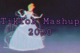 🦄TikTok Mashup🦄 2020 **not clean**!