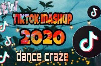 New TikTok Mashup 2020 (dance craze)
