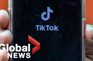 "U.S. labels TikTok video app a ""national security threat"""