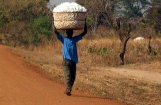 Afrika yatırım bekliyor