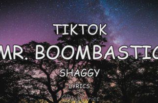 Mr. Boombastic – Shaggy Tiktok (Lyrics)