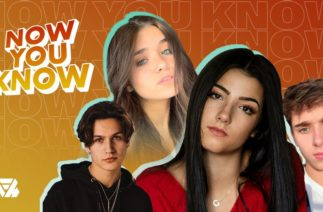 What is all the Drama on TikTok Right Now? Charli, Chase, Nessa & More!