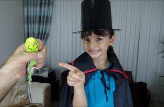 Lina Sihirbaz Oldu Şapkadan Canlı Kuş Çıkardı Funny Kids Video