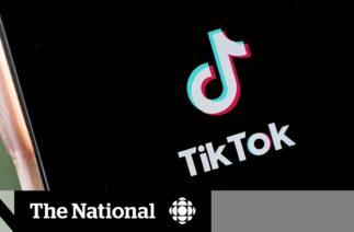Trump to block downloads of TikTok and WeChat in the U.S.