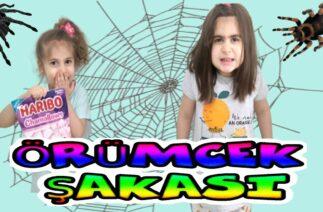 Suna Ablasına Örümcek Şakası Yaptı Sonu Komik Bitti – Suna played a spider joke to her sister