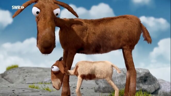 Komik Kuzu ve Komik Koyun funny lamb मज़ेदार मेमना