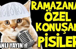 Ramazana Özel Konuşan Pisiler – En Komik Kedi Videoları Canlı Yayın