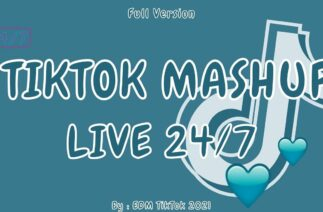 TikTok Mashup 2021 (Not Clean) -💎 LIVE 24/7