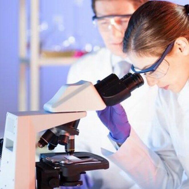 Alman – Türk Bilim Yılı'nın açılışı yapıldı