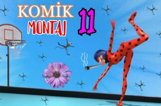 Miraculous – CRACK – Funny Montage #11